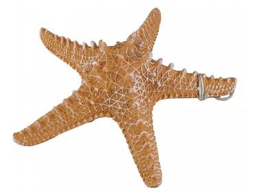 Декоративная Морская звезда 31 см, оранжевая